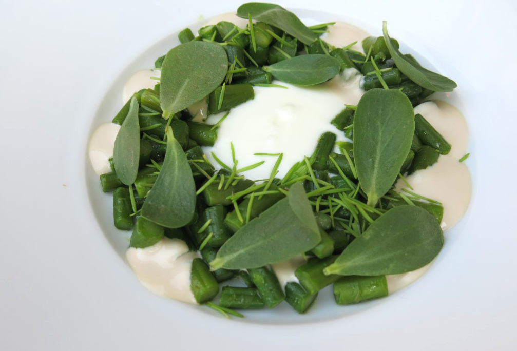 Spargel mit Haselnuss, Schafsjoghurt, Fichtennadeln